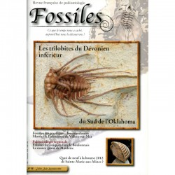 Fossiles N°11