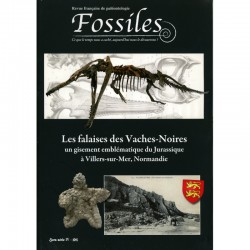 Fossiles Hors-Série IV