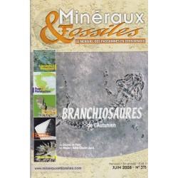 Minéraux & Fossiles N° 371