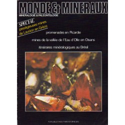 Monde & Minéraux N° : 24